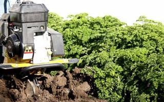 Выбор культиватора для почвы