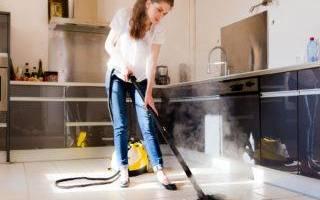 На что способен пылесос для химчистки