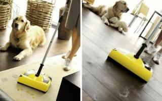 Какой пылесос лучше приобрести для уборки шерсти животных