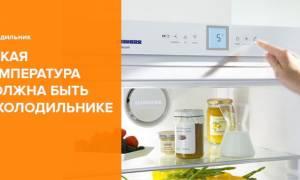 Температура в холодильнике, или Где его самое холодное место?